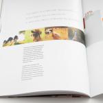cataloghi-aziendali