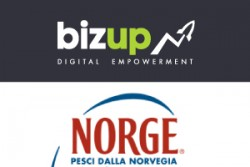 Bizup-norge