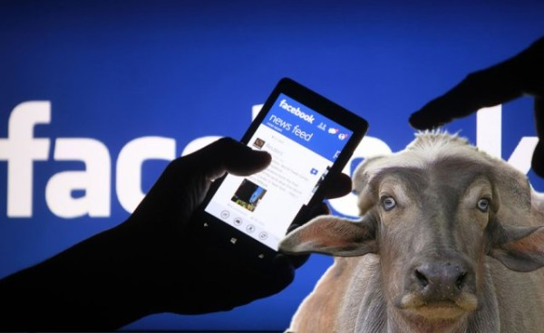 Facebook è La Vera Bufala Che Gira Su Internet