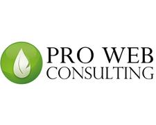 Pro Web Consulting E Il SEO-driven Workflow Allo IAB 2015